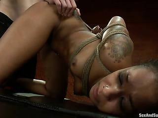 ebony cutie bondage gets
