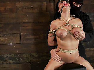 bound and gagged honey