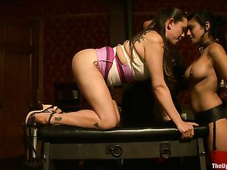 tied porn whores suck